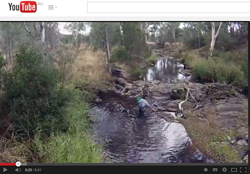 Still from YouTube video on the Hollands Creek demonstration reach project