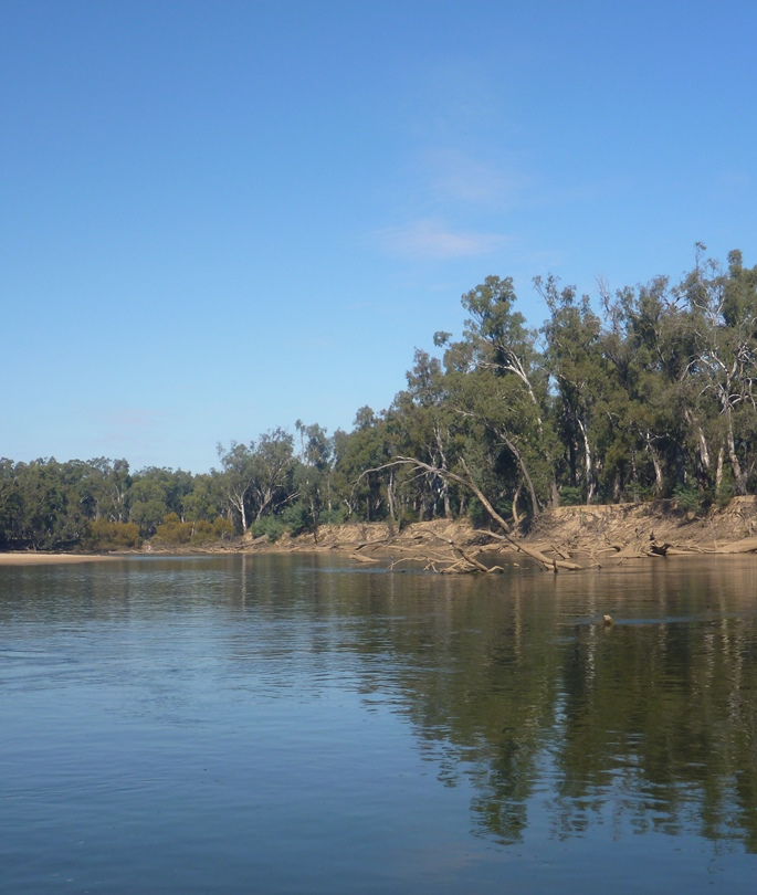 The Murray River, which forms part of the border of Victoria