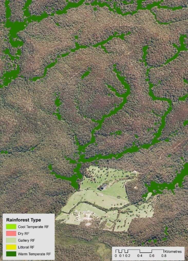 Results from modelling showing rainforest areas in East Gipplsand