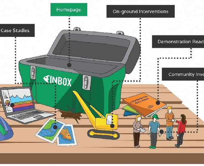 Finbox graphic, showing components of the river Demonstration Reach Program