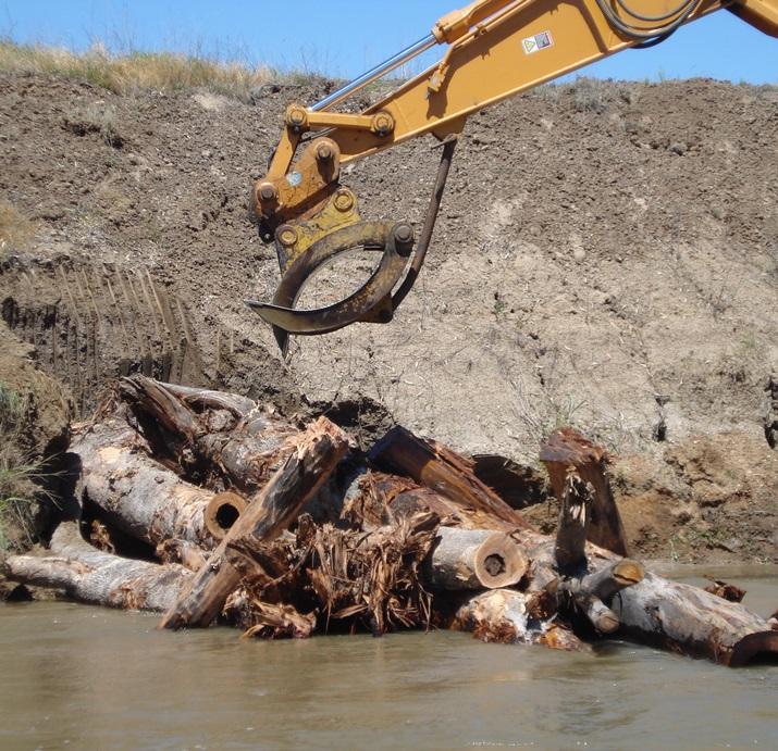 Restoring a river Demonstration Reach by returning woody habitat