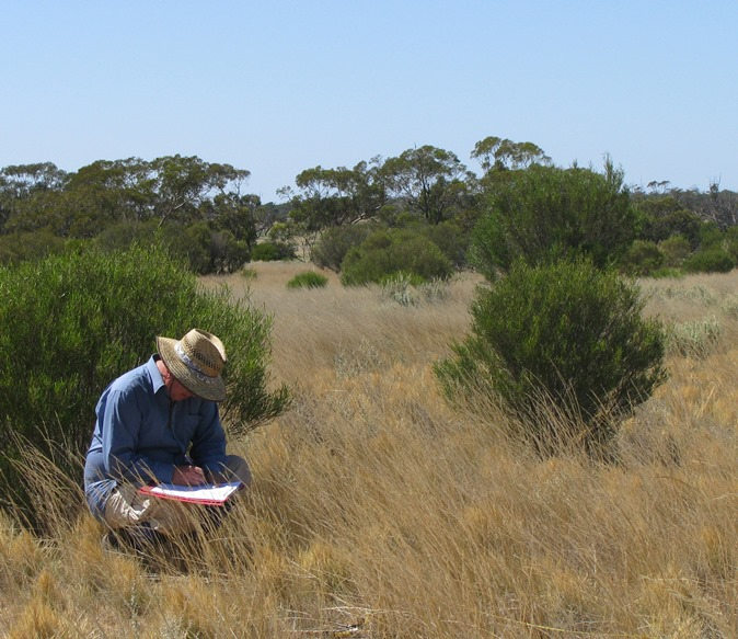 ARI scientist assessing a semi-arid woodland in the Mallee (Murray-Sunset National Park)